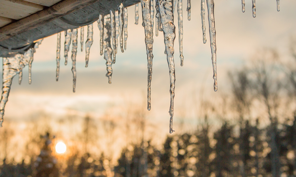 Winter Policy Updates