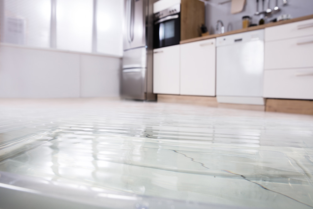 Water Damage and Your Insurance Policy